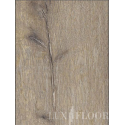 JANGAL National Park Pro - 8014 Joshua Tree Oak / Laminat / Holzoptik